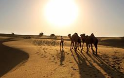 BreathtakingIndia Exclusive: Jaisalmer Tours | Rajasthan Tours - MYSTIC SUNSET