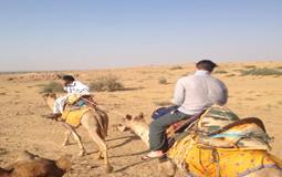 BreathtakingIndia Exclusive: Jaisalmer Tours | Rajasthan Tours - HALF DAY SAFARI