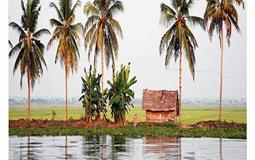 BreathtakingIndia Exclusive: Alappuzha Tours | Kerala Tours - Full day tour